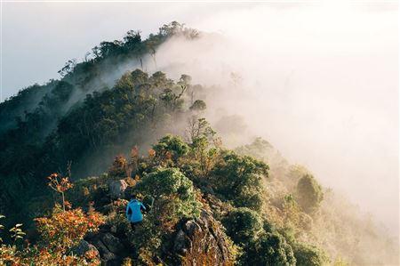 Mùa lá phong vàng ở núi rừng Tây Bắc 🍁