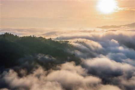 Miền núi Quảng Trị trong sương sớm 🌄