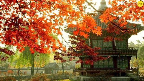 KHÁM PHÁ HÀN QUỐC - ĐÀI LOAN SEOUL- NAMI - ĐÀI BẮC