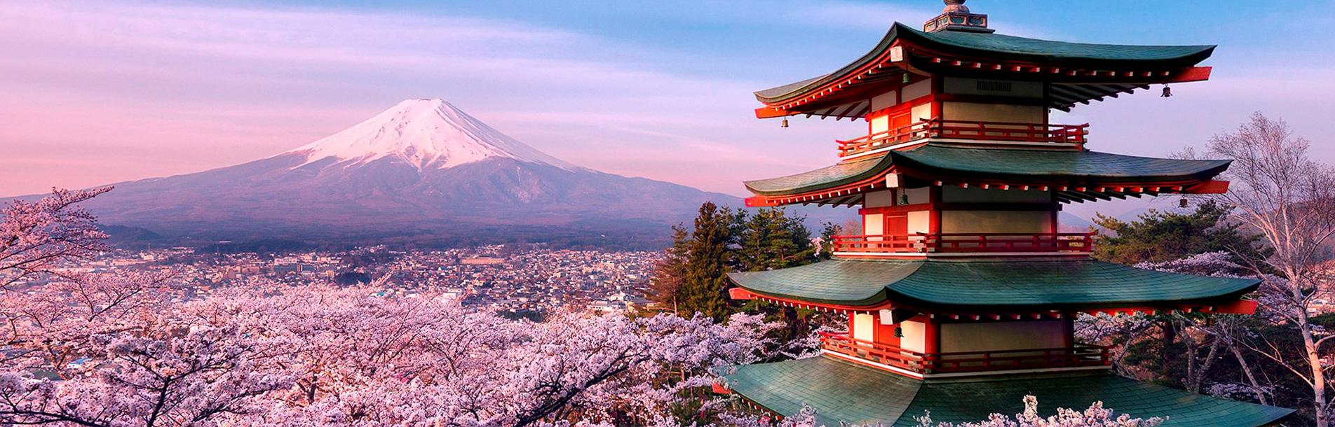 Xứ sở hoa anh đào - Nhật Bản